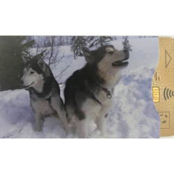 Protège-CB Montagne Husky